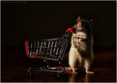 Gonzales va faire du shopping :-)