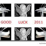 Good Luck 2011!