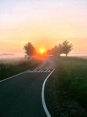 Good Morning Oranjedijk!