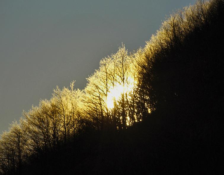 good morning sun 1