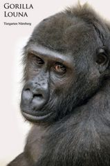 Gorilla LOUNA