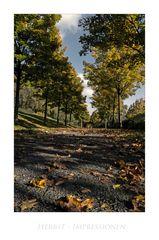 """GosLarsche Impressionen """" Herbstimpressionen, am Georgenberg aus meiner Sicht.... """""""