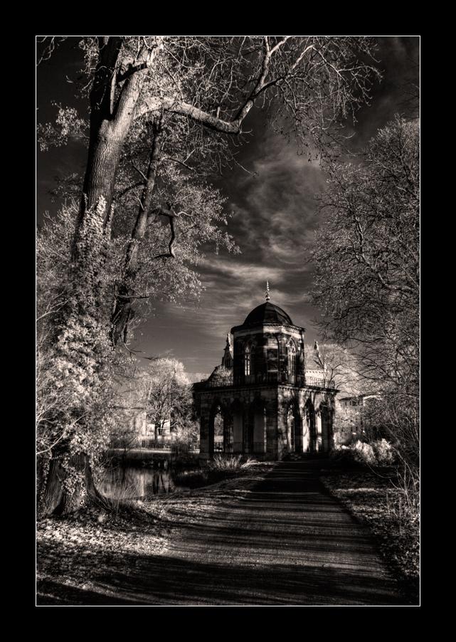 Gotische Bibliothek II [SW]