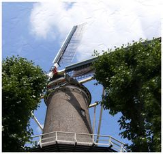 Gouda Hollanda 3