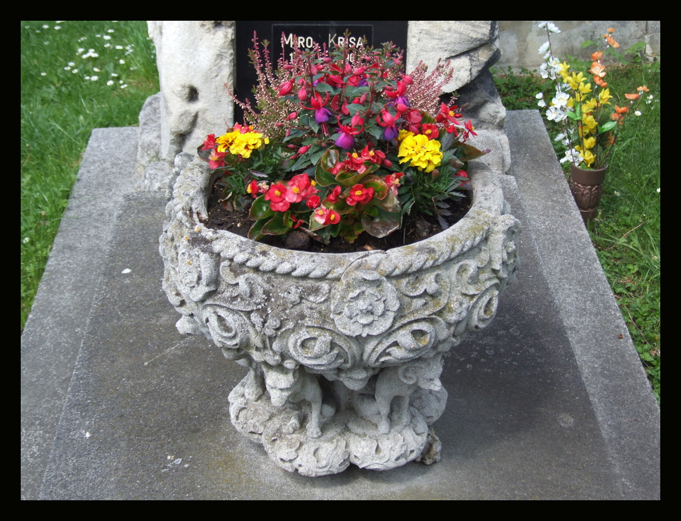 Grabschmuck am Meidlinger Friedhof