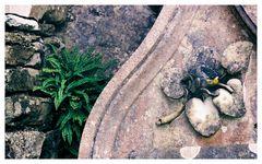- Grabstein auf der schottischen Insel Skye II -