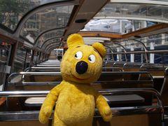Grachten-Tour mit dem gelben Bär