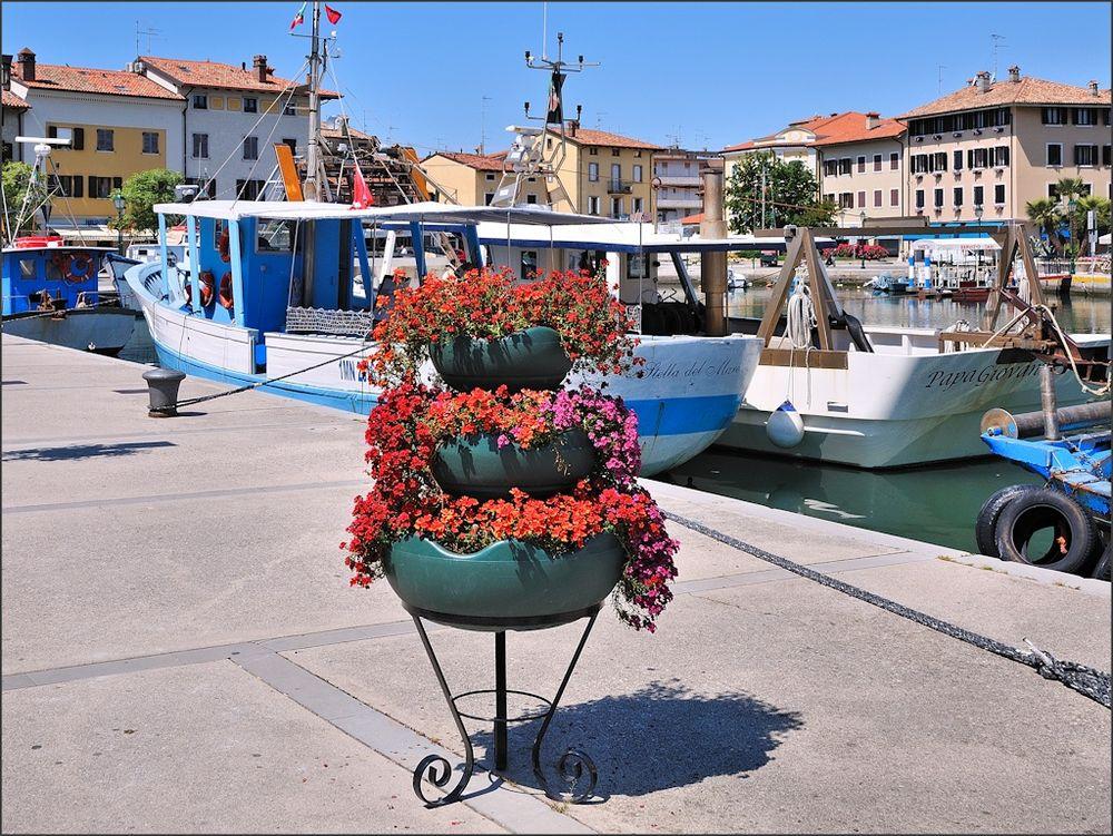 Grado - Blumen am Hafen
