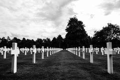 Gräber auf dem American Military Cemetery (Colleville-sur-Mer)
