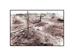 Gräber von Aidswaisen, Burundi