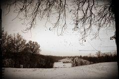 graffiato Inverno