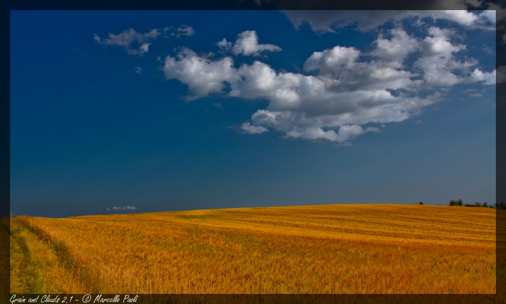 Grain and Clouds # 2.1