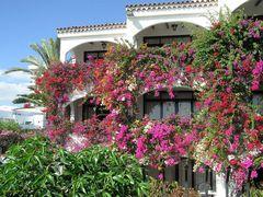 Gran Canaria so wunderschön