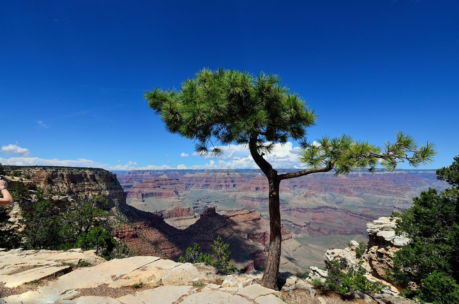Gran Canyon National Park