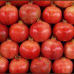 Granatapfel - Pomegranate