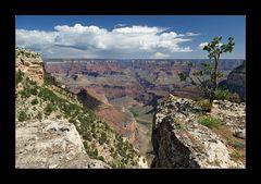 [ Grand Canyon ]