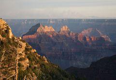 Grand Canyon im Licht der untergehenden Sonne...