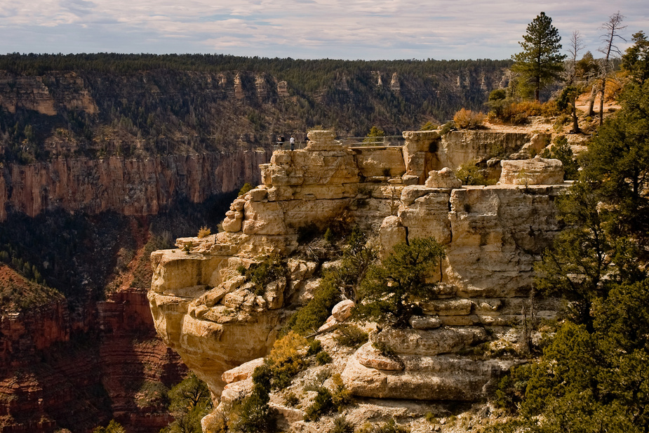 Grand Canyon - North Rim - Arizona - USA
