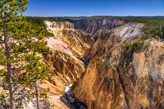 Grand Canyon of the Yellowstone, Grand View, Wyoming, USA