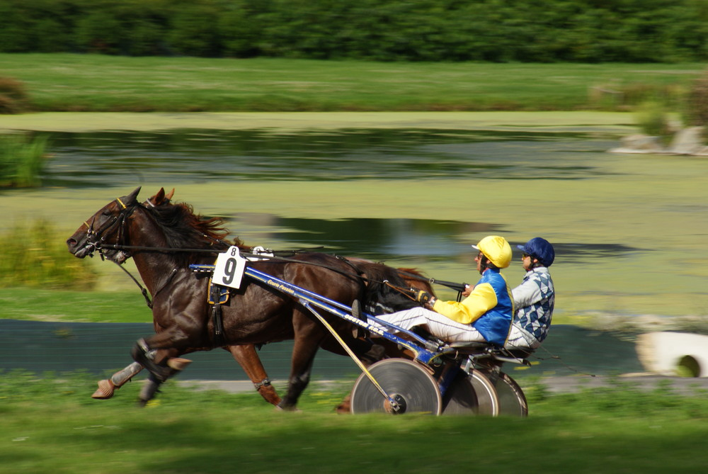 grand trot national