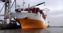 Schiffe...nur so (2)