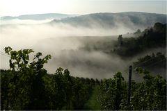 Grandiose Nebelstimmung