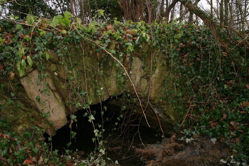 Grasbrücke