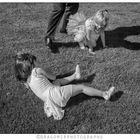 Grass Touch