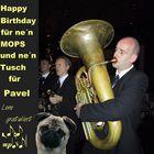 Gratulation für  PAVEL