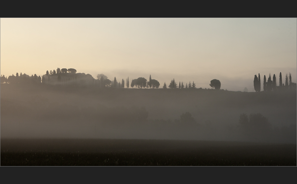 graue Nebel