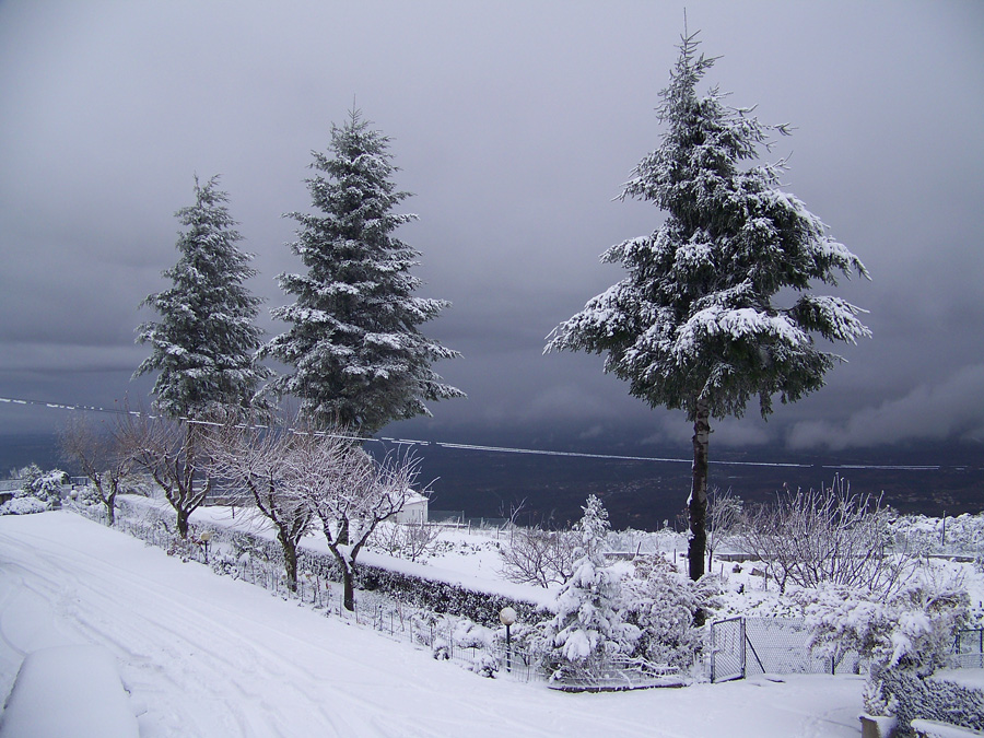 Gray Landscape 2