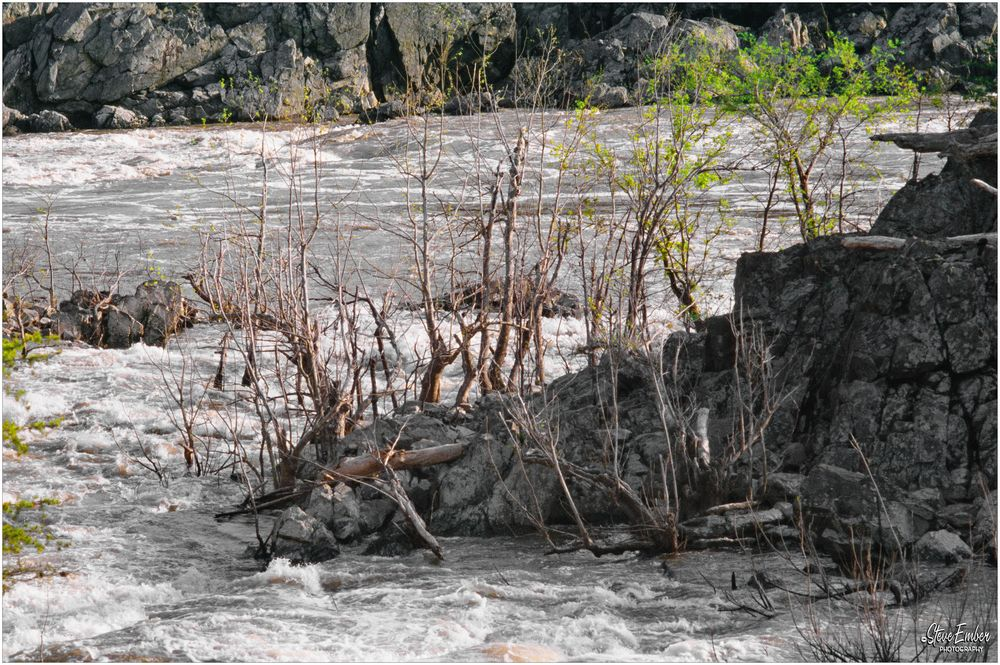 Great Falls Rapids, Early Spring