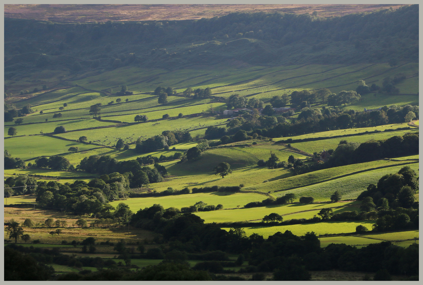Great Fryup Dale North Yorkshire