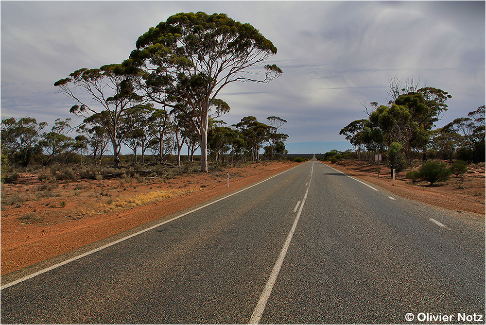 Great Northern Hwy (95)