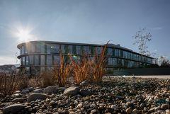 Green Building - moderne Architektur ins Kraut gesetzt.