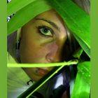 Green Eye Soul