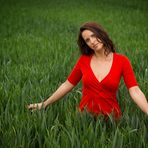 green field -2-