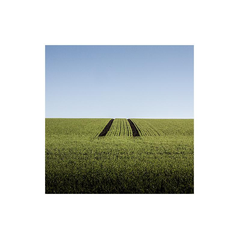 [ green field ]