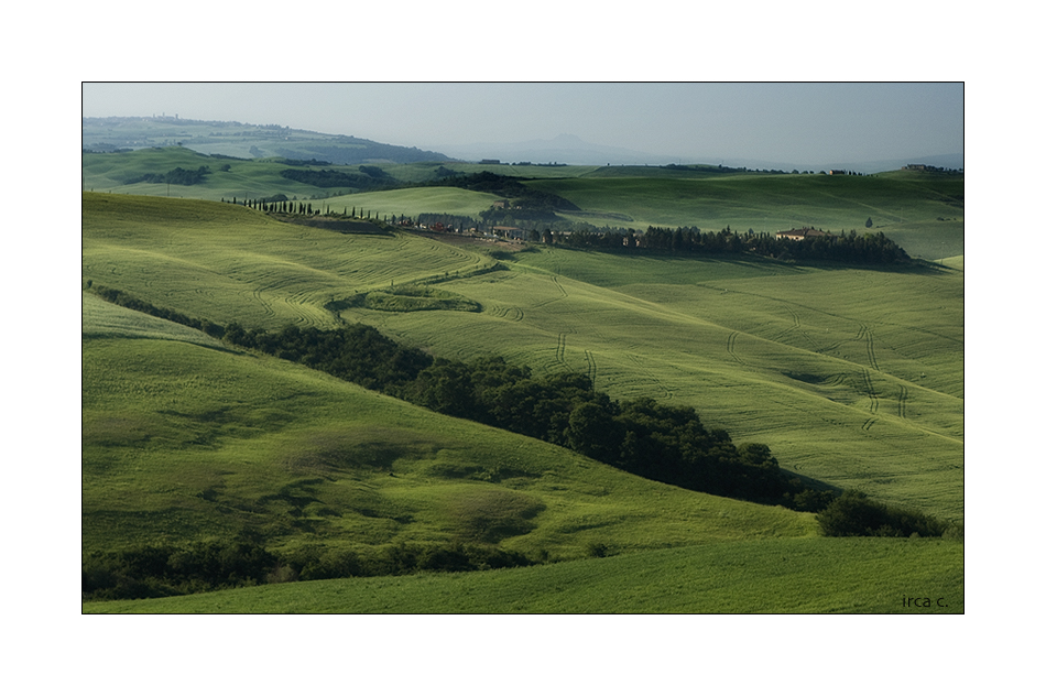 green, green fields