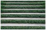 green stairs...