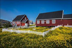 Greenland #18