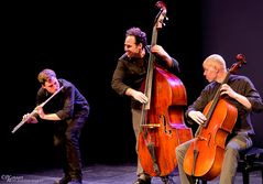 Greg Pattillo's Project Trio