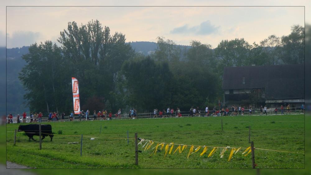 Greifensee-Lauf