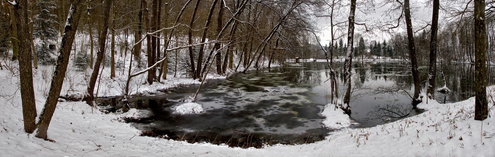 Greither teich im zur ckgekehrten winter foto bild for Teich winter