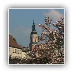 Greizer Frühling 1
