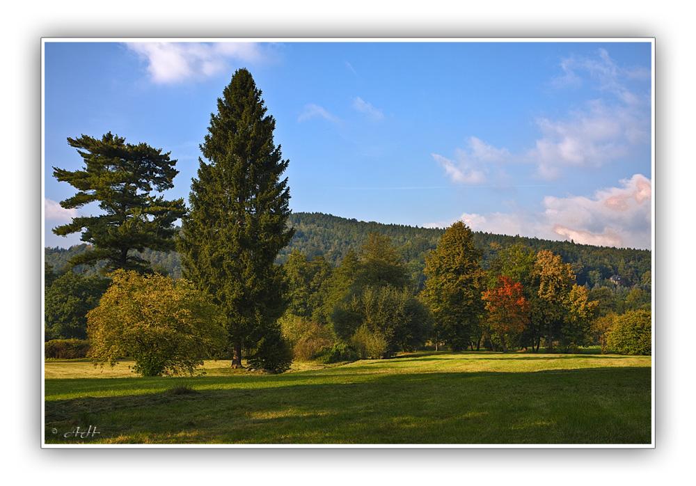 Greizer Park - Herbstliche Farben