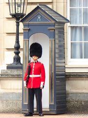 Grenadier-Guards - königlieche Wache