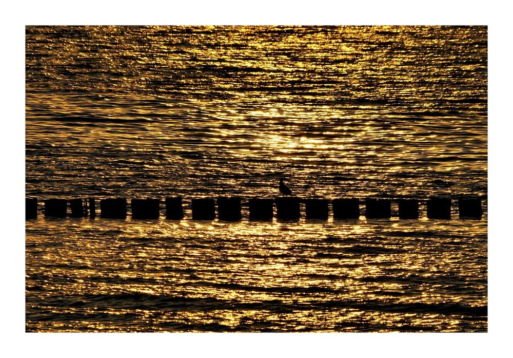 Grenze im Wasser