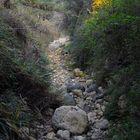 Greto fiume 2