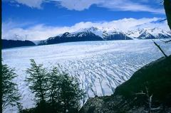 Grey-Gletscher, NP Torres del Paine, Chile